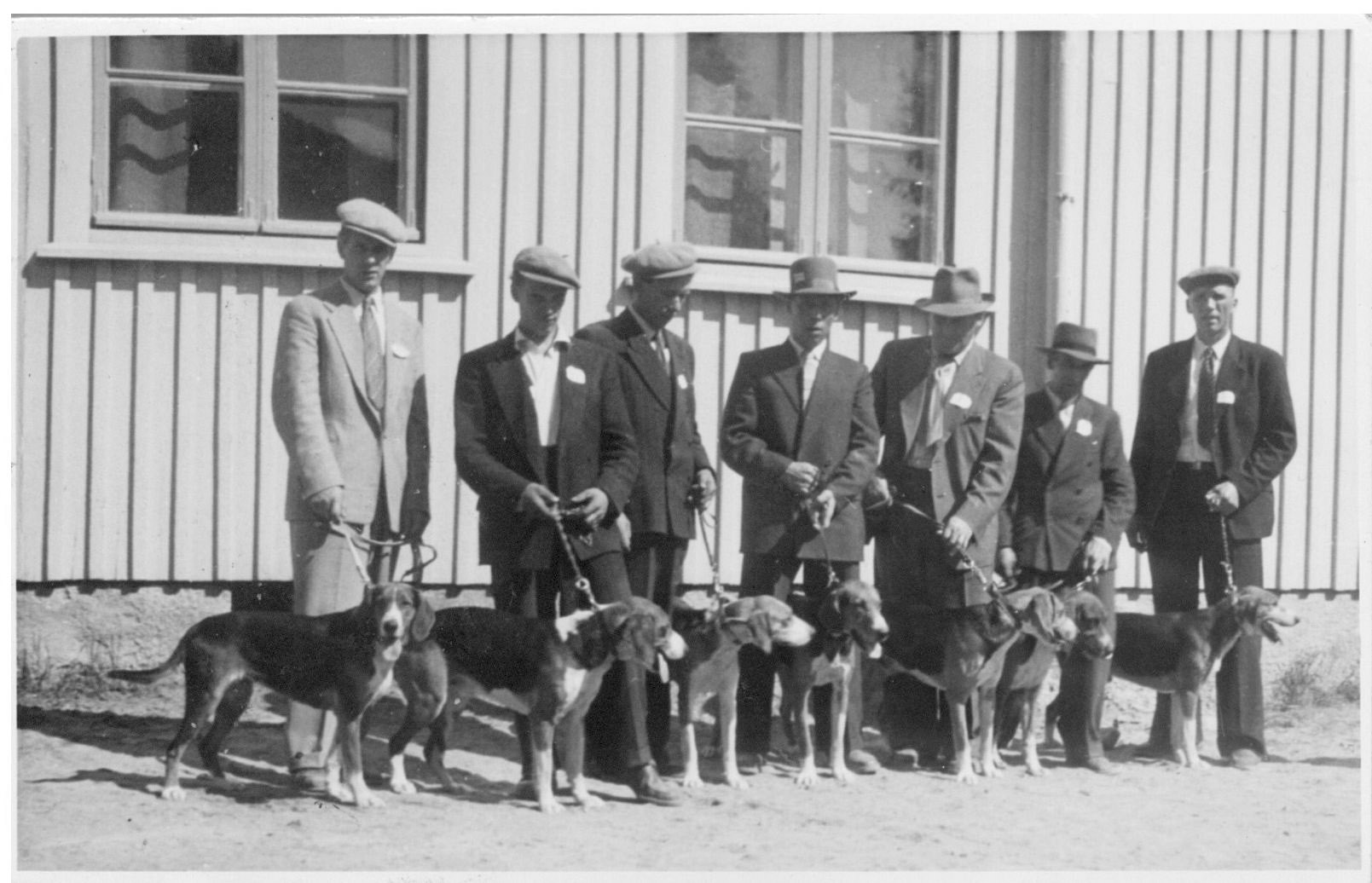 Herrasmiehet koiranäyttelyssä