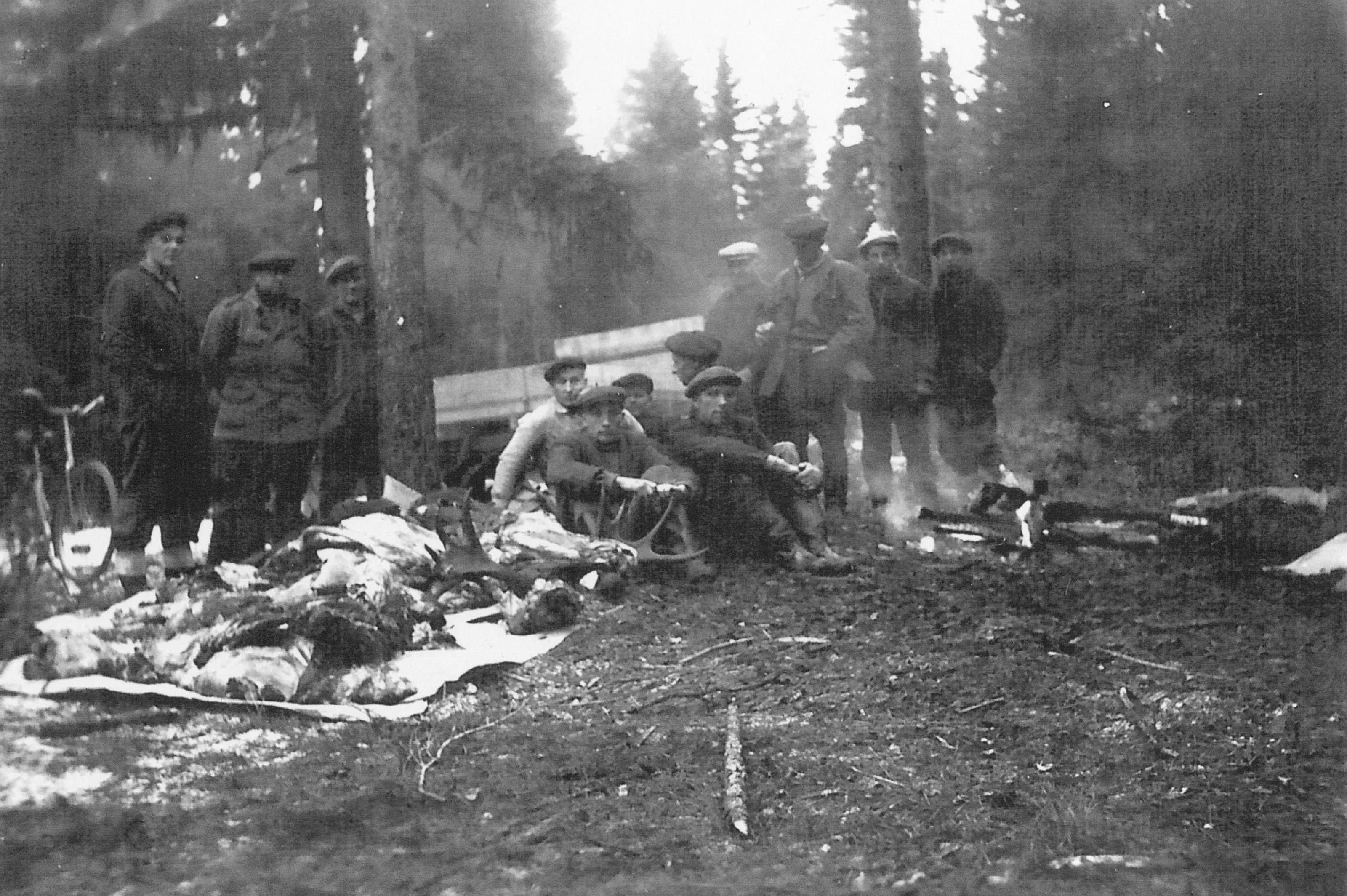 Kuva34Joskus hirvi pilkottiin metsässä